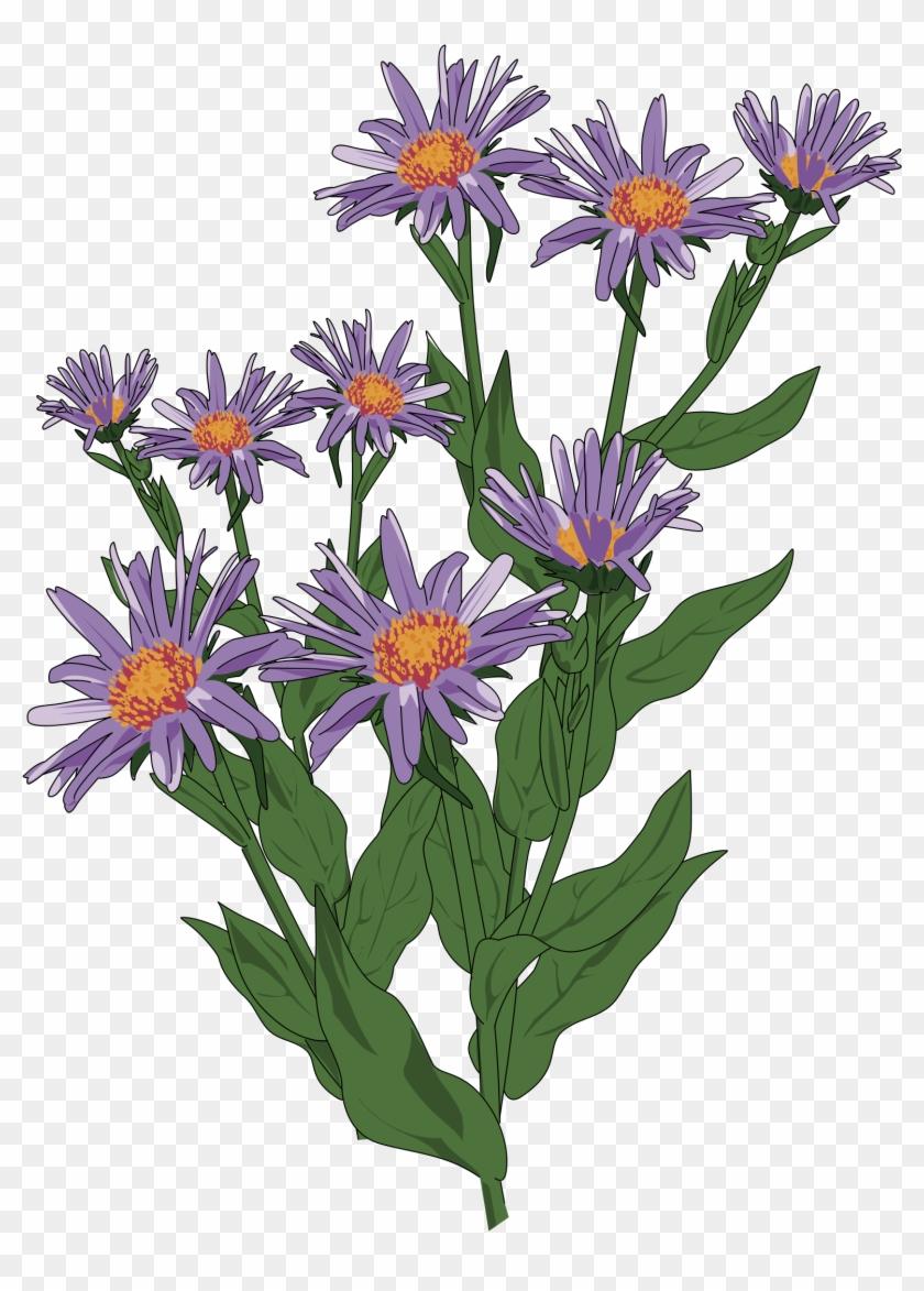 Clipart - - Wild Flower Clip Art #290194