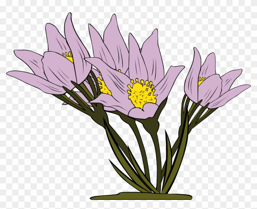 Crocus Clipart Wild Flower - Garden Flowers Coloring Book: Relaxing Coloring Pages #290214
