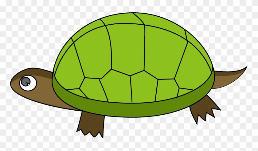 Tortoise Clipart - Clipart Images Of Tortoise #290298