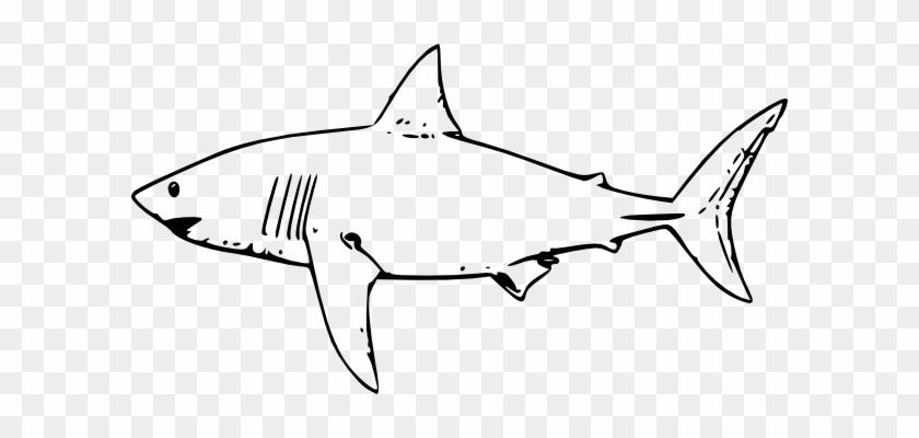 Sharks Clipart - Sharks Clipart #290486