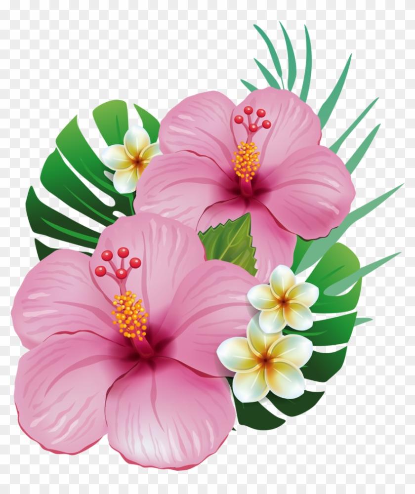 Hawaiian aloha tropical flower hawaiian moana and moana flowers hawaiian aloha tropical flower hawaiian moana and moana flowers png izmirmasajfo