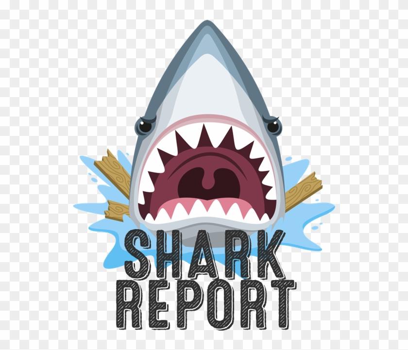 Sharkreport - Machoire De Requin Dessin #290908