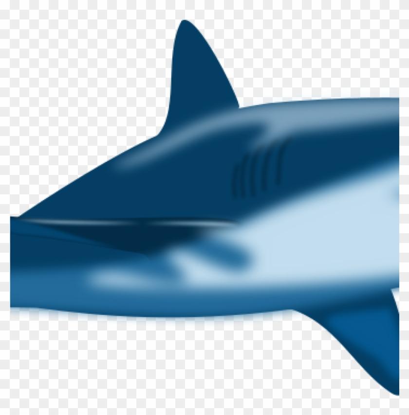 Free Shark Clipart Imagesclipartpandashark Clip Art - Custom Blue Bull Shark Shower Curtain #290966