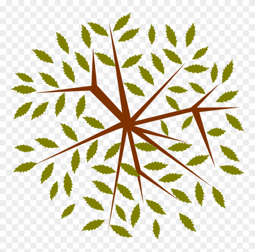 Tree-12b - Portable Network Graphics #291264