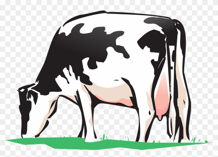 Animated Cows Pictures 25, Buy Clip Art - Cow Drink Water Clipart #291355