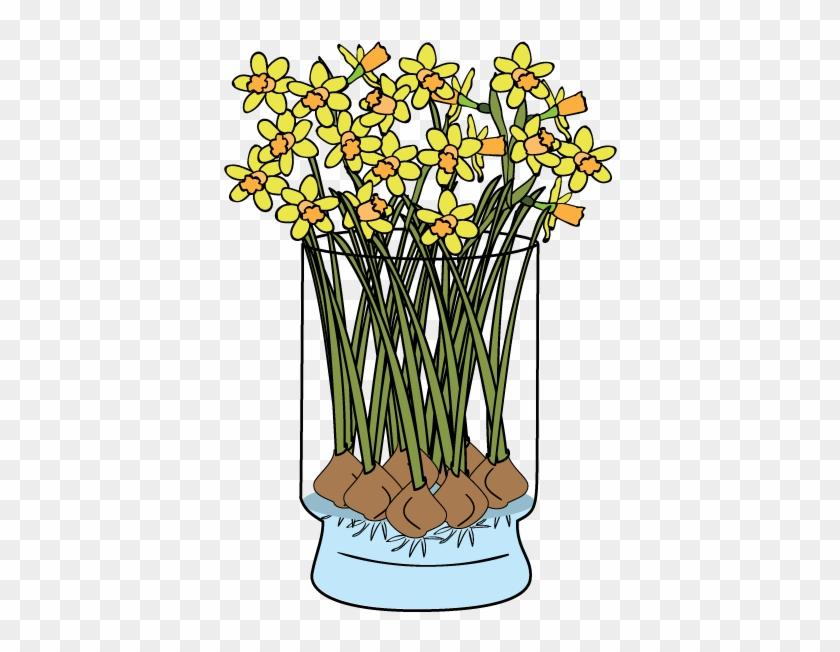 Daffodils-faq - Daffodils-faq #291687