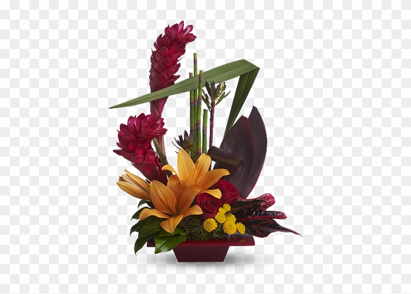 Shop For Tropical Flowers - Contemporary Flower Arrangement Ideas #291690