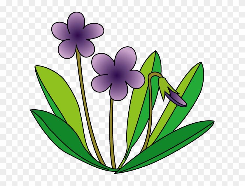 Violet Flower Clip Art - イラスト すみれ #291801