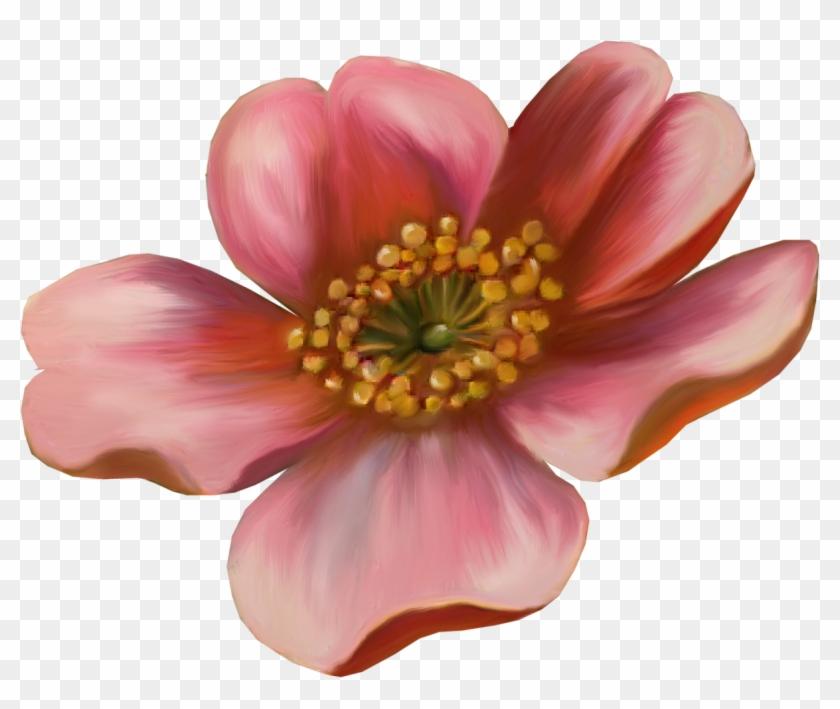 Flower Drawing Photography Clip Art - Flower Drawing Photography Clip Art #291957