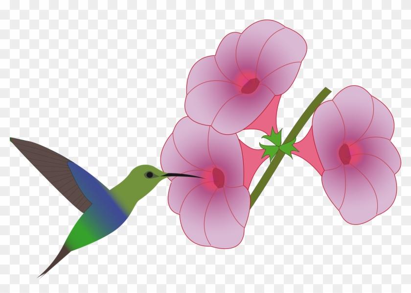 Big Image - Hummingbird With Flower Clip Art #292180