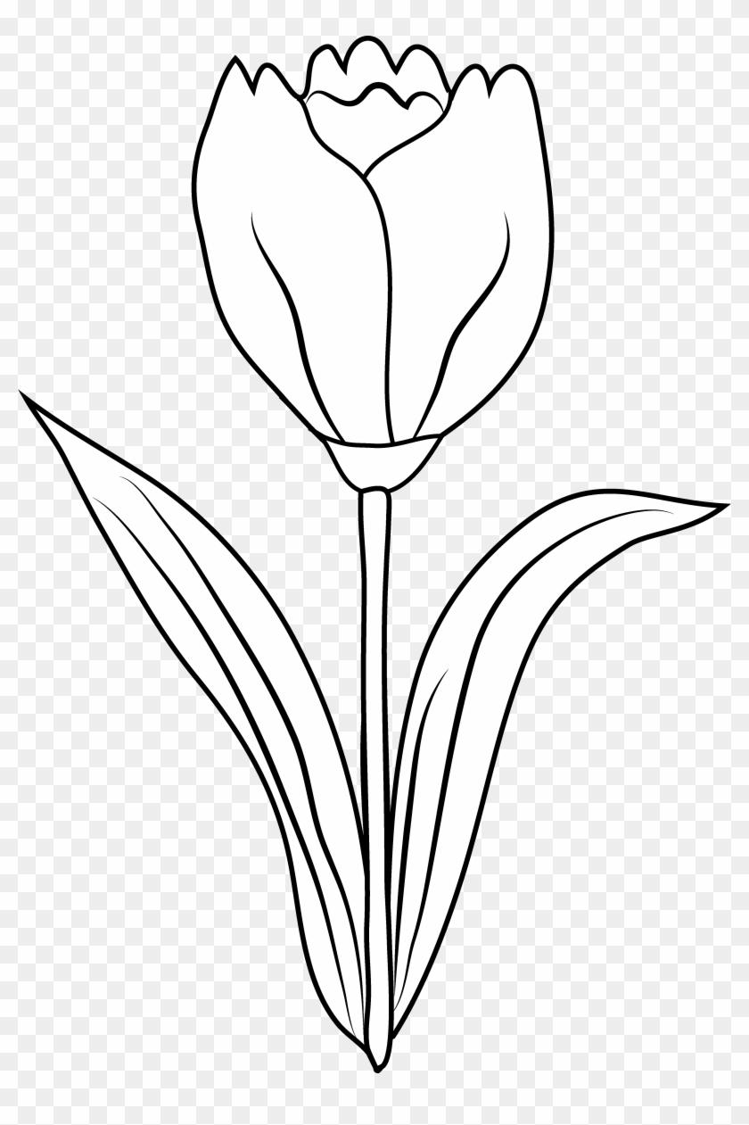 Clip Art Flower Black And White Clipart Panda Free - Clip Art #292212