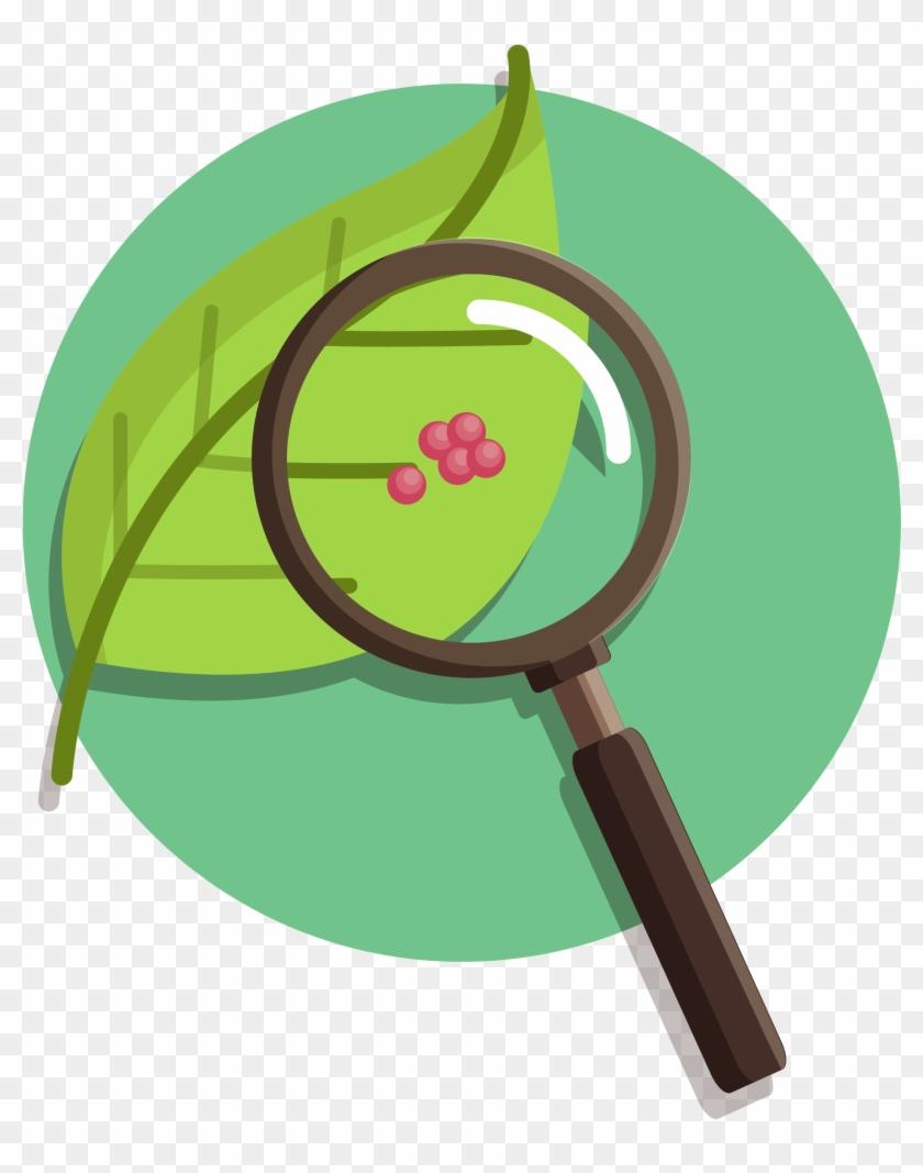 8 Nature Vs Nurture Articles To Support Your Persuasive - Nature Vs Nurture Transparent #292343