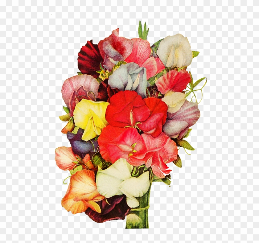 Corner With Pansy Flower, Sweet Pea Flowers - Sweet Pea #292439