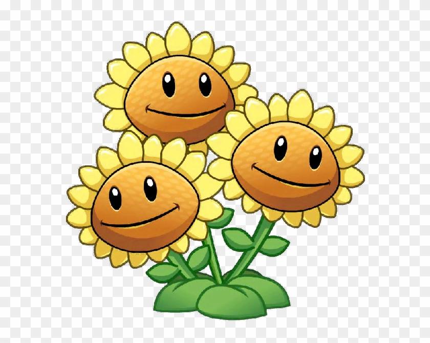 Three Head Sunflower Close Up - Sunflower Plants Vs Zombies #292455