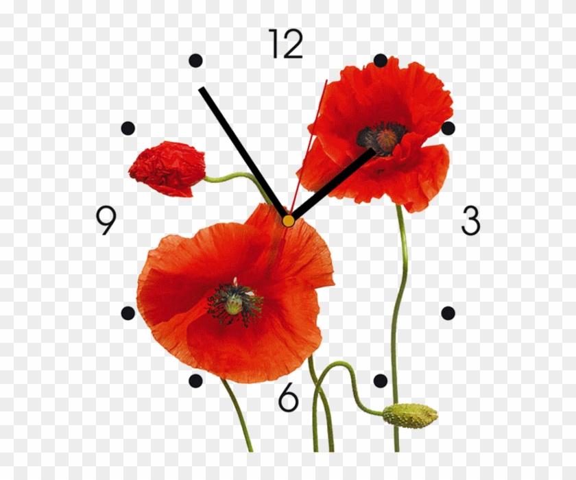 Clocks And Flowers - Contento Klaprozen Wandklok #292503