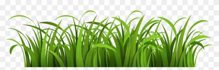 grass green grass vector png free transparent png clipart images download grass green grass vector png free