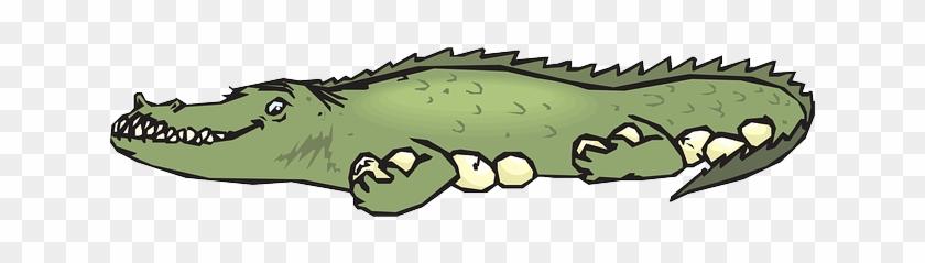 Cartoon, Protection, Eggs, Alligator, Guarding - Alligators #295134