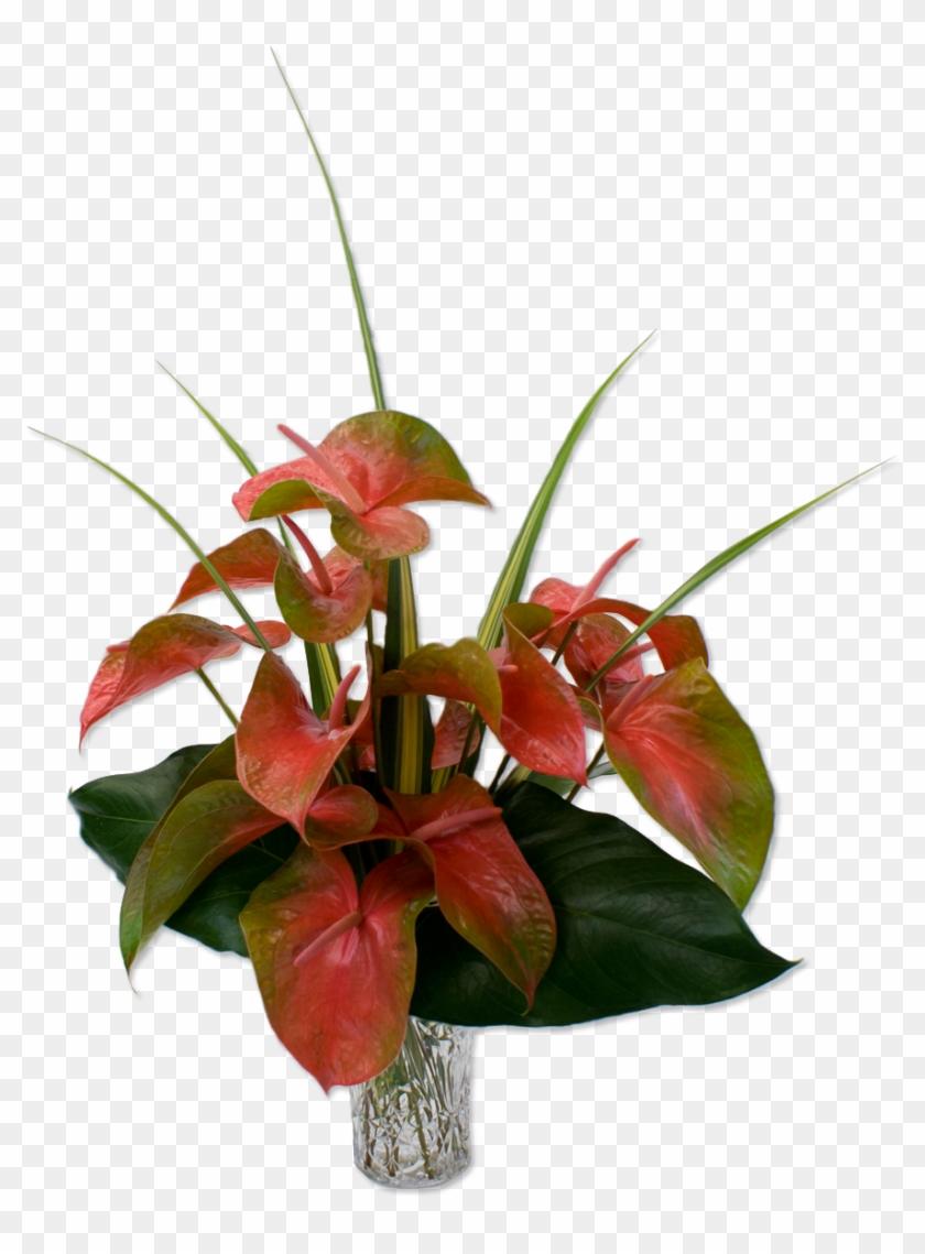 95 previous next hawaiian flowers bouquet transparent free 95 previous next hawaiian flowers bouquet transparent izmirmasajfo