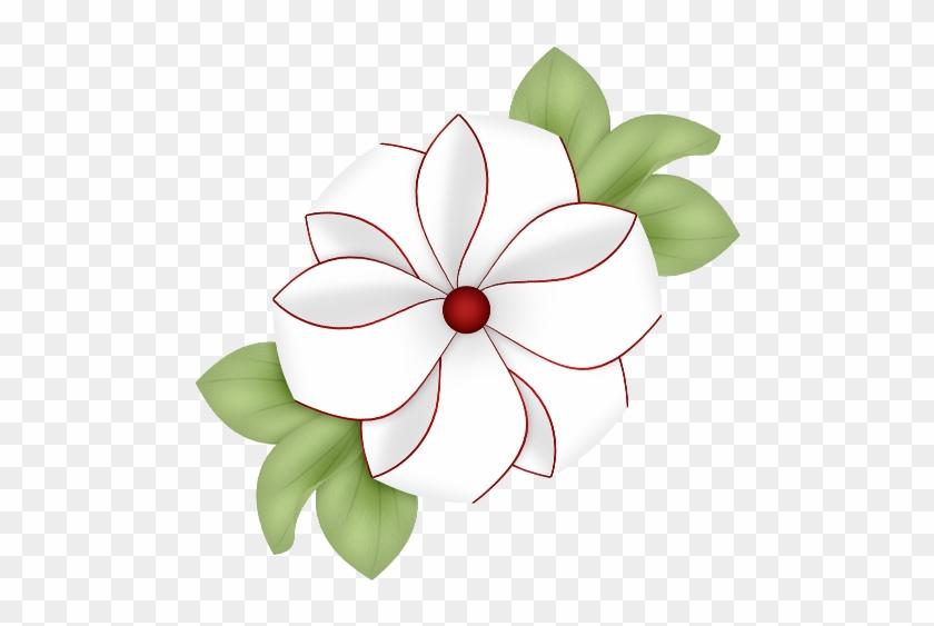 Virágok, Flores, Virág, Bloemen, Png - Polyvore - Free Transparent ...