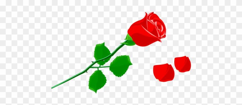 Petal Rose Flower Clip Art - Rosa Com Petalas Caindo #298542