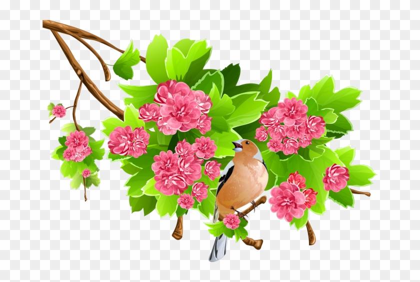 Clip Art Transparent Png Clipart Spring Flower Png Free
