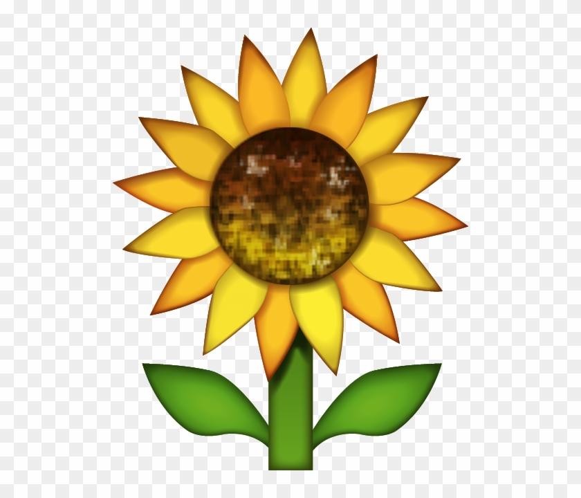 Sun Behind Cloud Emoji $0 - Sunflower Emoji Png - Free