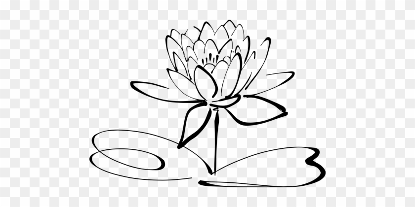 Free Lotus Clipart Black And White Images Download 2018: Lotus Flower Line Art Blossom Bloom Petal