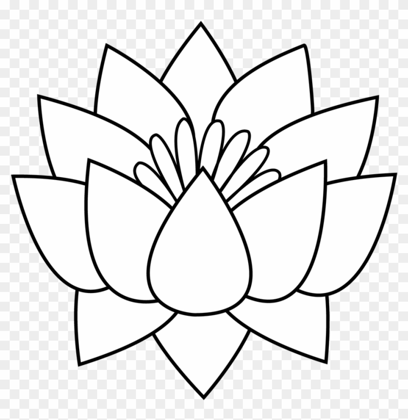 Office Large Size Flowers Black And White Drawing Clipart - Lotus Flower Line Art #301033