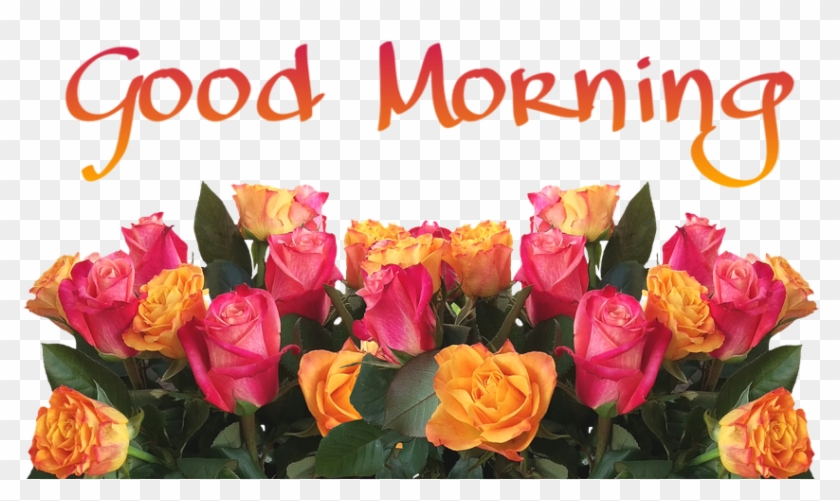 99 Good Morning Wishes With Flowers Pictures - Wood With Flowers