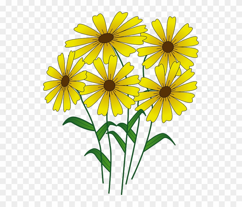 Blue, Simple, Fall, Outline, Yellow, Drawing - Flowers Clipart #302932