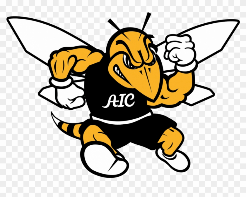 Wrapping Up The Fall Sports Season Aic Yellow Jacket - American International College Yellow Jackets #303063