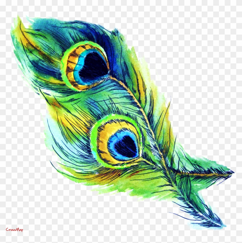 Eye Feather Christian Clip Art - Peacock Feather Clip Art Free Download #306091