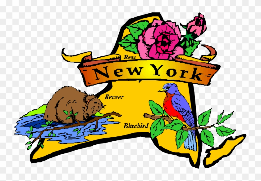 Best Places To Live - New York State Flower And Bird #306194