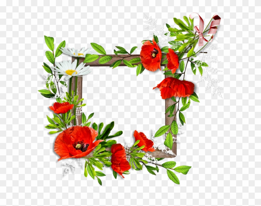 Fiori Png.Flower Backgrounds Frames Tube Cgi Belles Images Cornice Di
