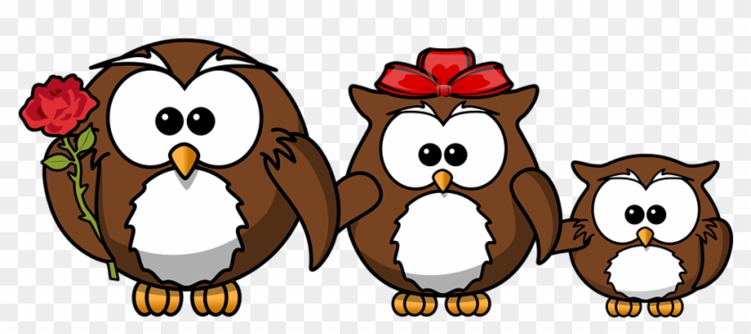 Owl Animal Bird Funny Family Father Mother