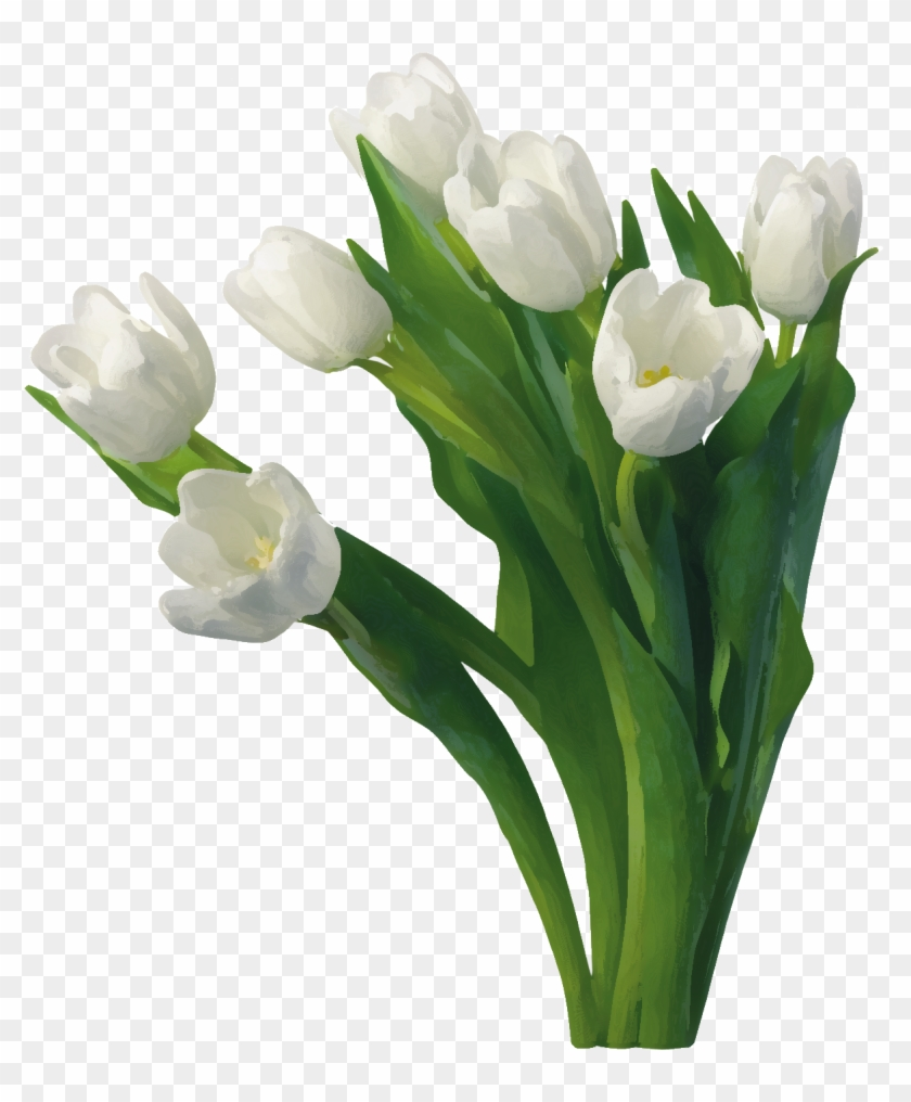 White Roses Images Good Morning Free Transparent Png Clipart