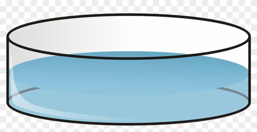 Kapaa, Hawaii Readyman Services Petri Dish Clip Art - Petri Dish Clip Art #310903