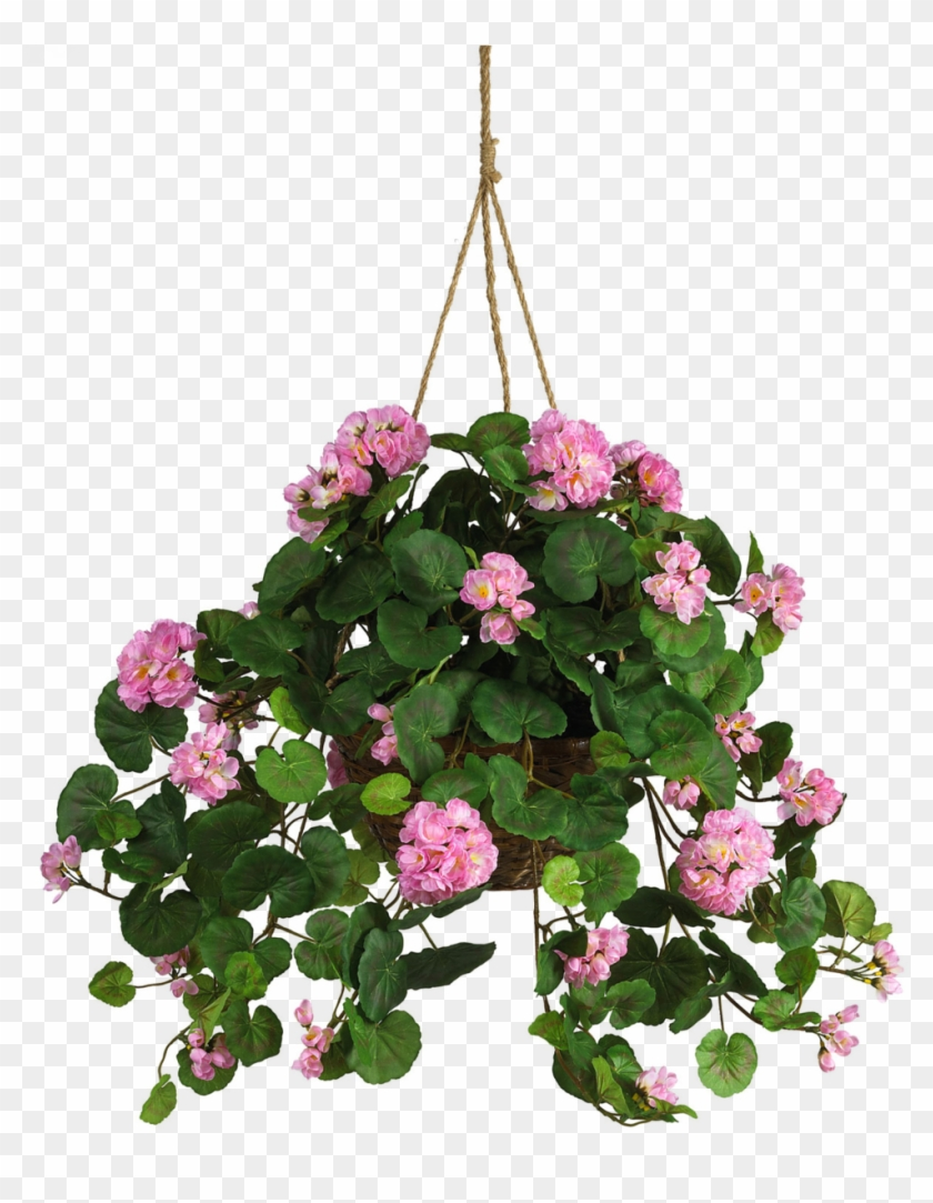 Money Plant Clipart - Hanging Pot With Flower #311135
