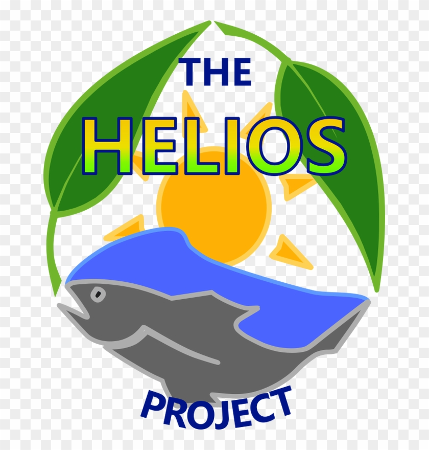 School Profiles - Helios Project #311299