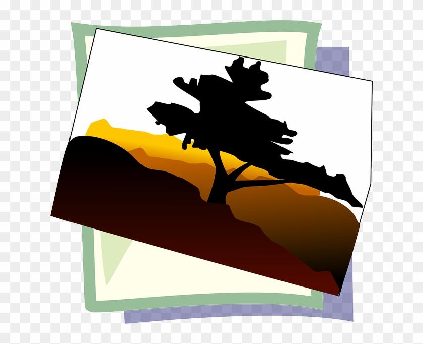 Symbol, Image, Photo, Icon - Bonsai Tree Clip Art #311484