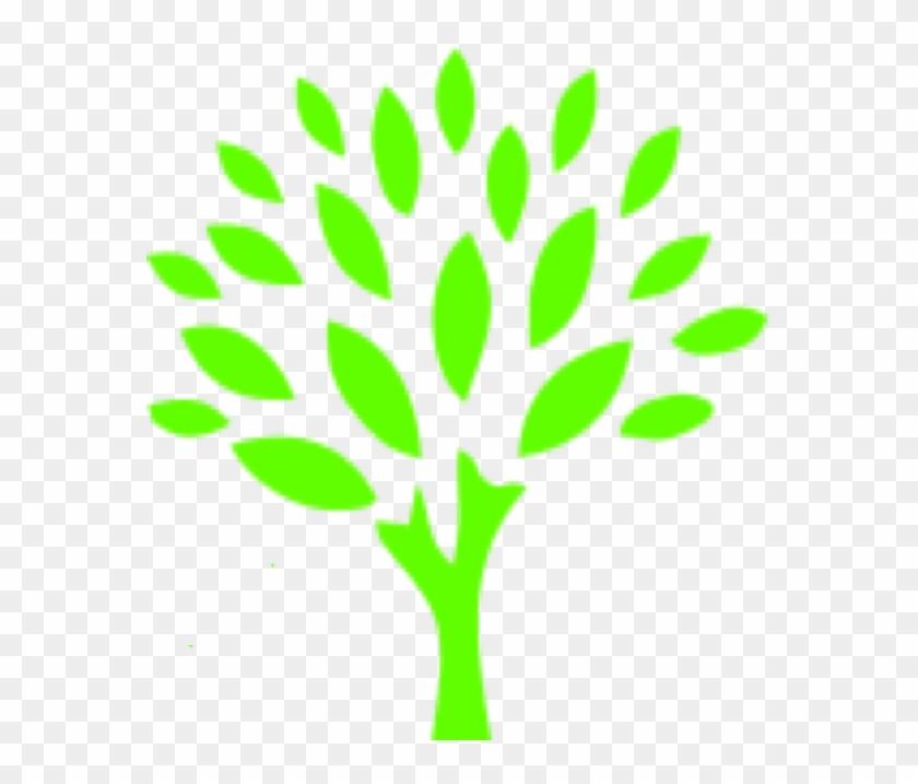 Go Green Auto Spa #311852