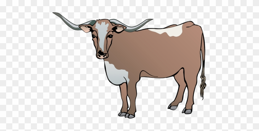 Longhorn Cattle Clipart Drawing Cow Vector Free Transparent Png Clipart Images Download