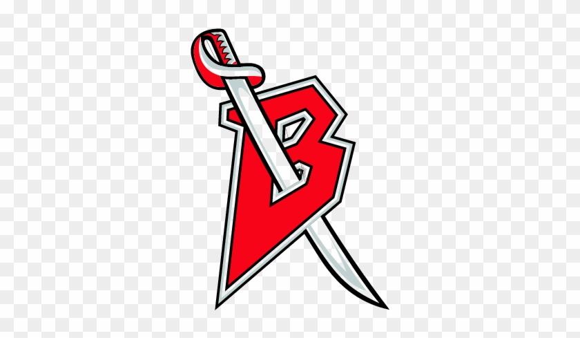 Buffalo Sabres - Buffalo Sabres Alternate Logo #315254