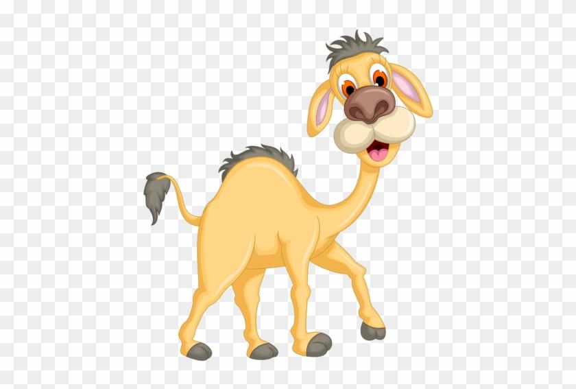 Soloveika Альбом «клипарт / Животные / Зверушки / Жирафы, - Cute Camel Cartoon Png #315306