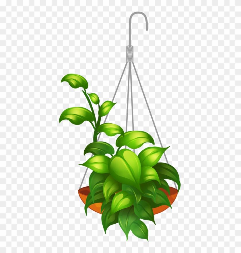 Hanging Flower 2 - Hanging Plants Vector Png #315307