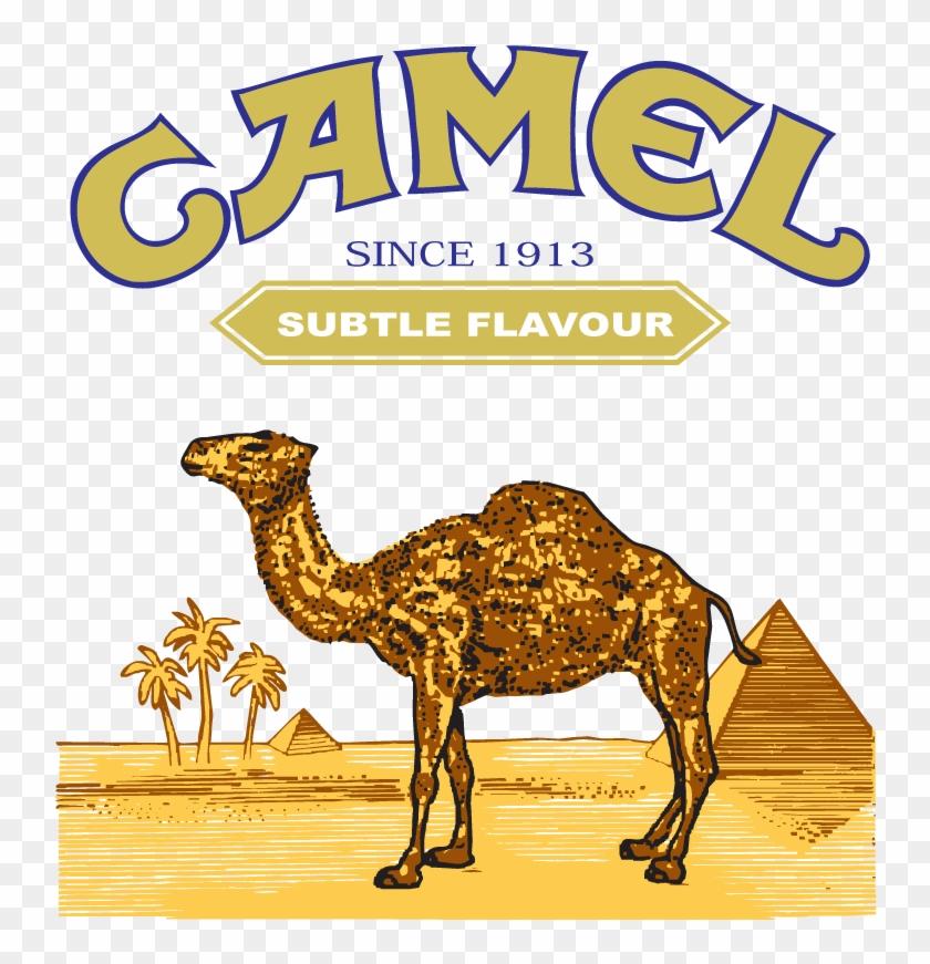 Camel Cigarette Logo - C Note Camel Cash #315338