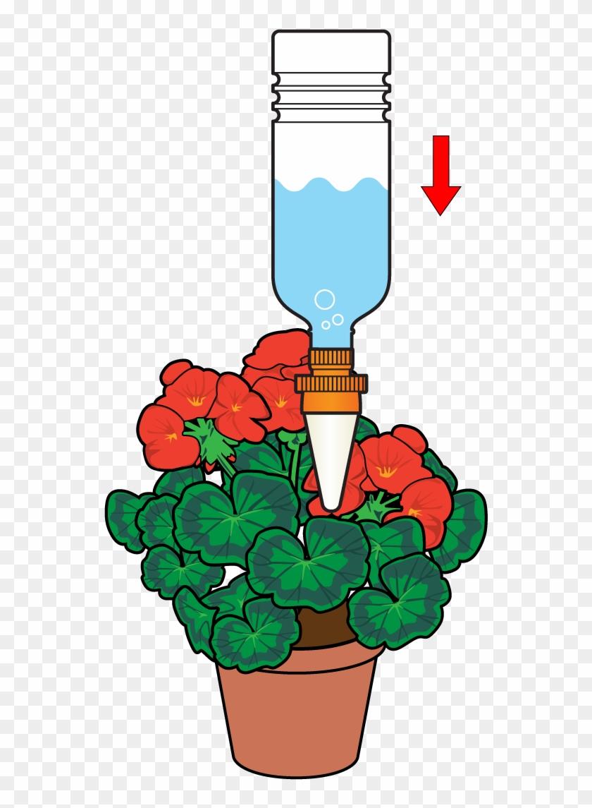 Insert The Cone Into The Plant Pot To Allow A Slow - Aquasolo 10420 4 Cônes Arrosage Medium Vert #315503