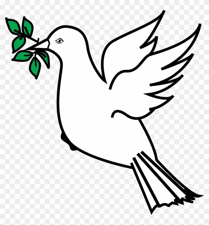 Olive Clipart Bird - Dove With Olive Branch Clipart #317508
