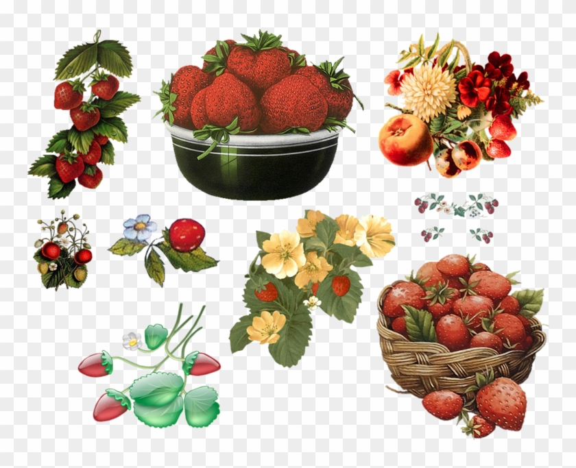 Strawberry Clip Art - Strawberry Clip Art #321362