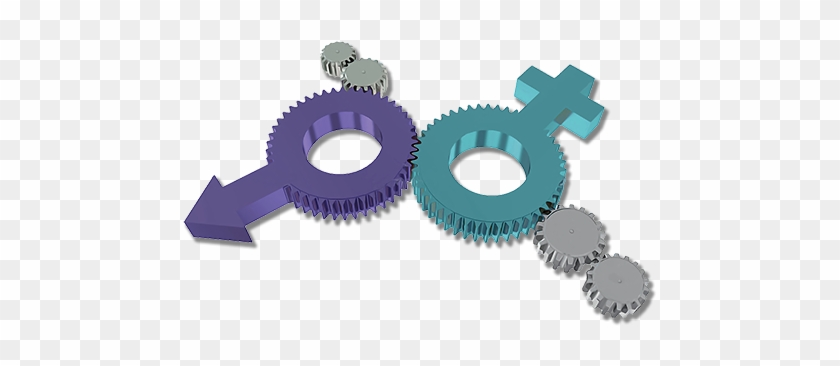 Open Gender And Vulnerable Populations - Gear #321915